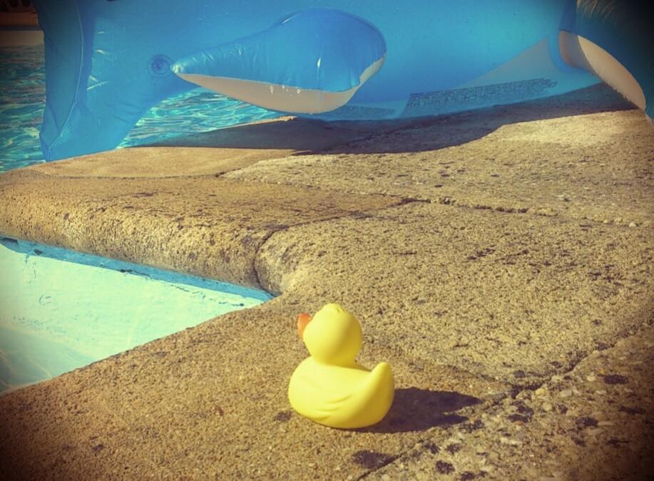 Promotion vacances d'été en Bretagne