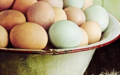 Trouver une location en Bretagne pour les vacances de Pâques